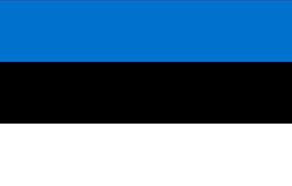 Eesti Vabariigi 102. aastapäevale pühendatud väliaktus